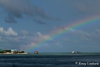 regenbogen hafen